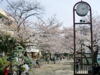まどか武蔵新城のイメージ写真2