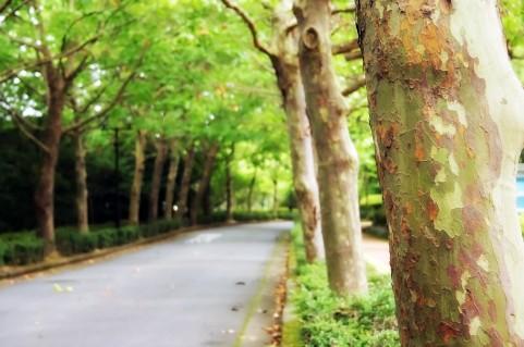 胃腸科内科北川医院